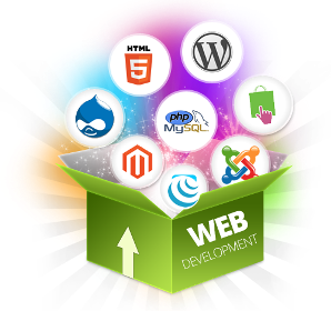 Web Development for Technology Companies